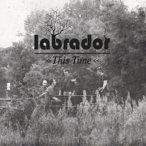 This Time by Labrador