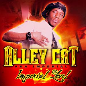 Aint No Gal cover art