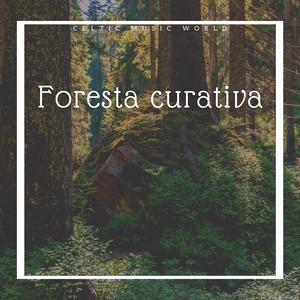 Foresta curativa - Musica strumentale celtica