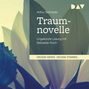 Traumnovelle Audiobook