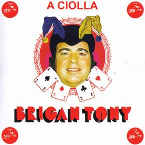 A Ciolla - Brigantony