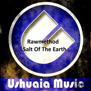 Salt Of The Earth - Original Mix cover art