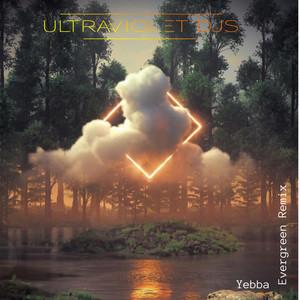 Evergreen (UltraViolet Djs Remix)