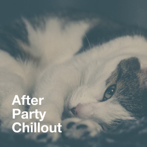 After Party Chillout album