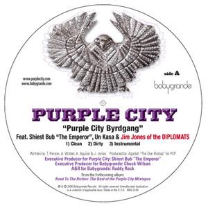 "Purple City Byrdgang (feat. Jim Jones (of the Diplomats), Un Kasa & Sheist Bubz) (12"")"