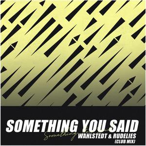 Something You Said (Club Mix)