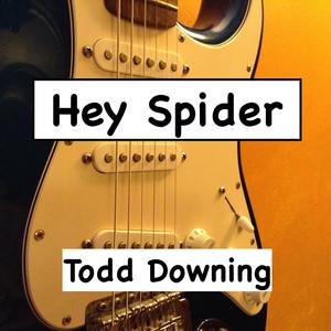 Hey Spider