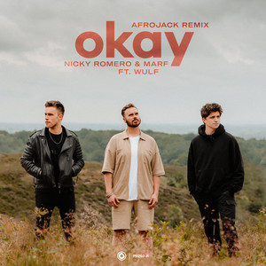 Okay (Afrojack Remix)
