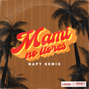 Mami no llores (Acho Laterza by Napy Remix)