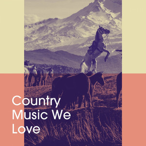Country Music We Love album