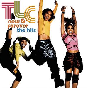 TLC ft Sean Paul & Lil Jon – Come Get Some (Studio Acapella)