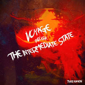 Voyage Through the Intermediate State album