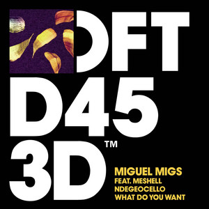 What Do You Want (feat. Meshell Ndegeocello) - Edit by Miguel Migs, Meshell Ndegeocello