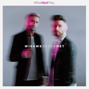 Wish We Never Met - WhoHurtYou