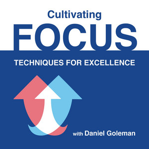 Cultivating Focus: Techniques for Excellence Audiobook