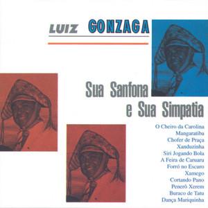Luiz Gonzaga Sua Sanfona E Sua Simpatia album