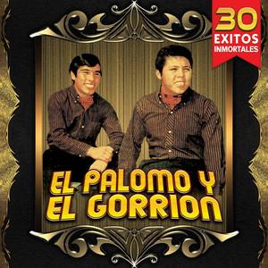 Lucio Vasquez by El Palomo Y El Gorrion