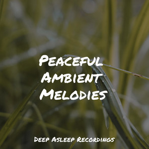 Peaceful Ambient Melodies