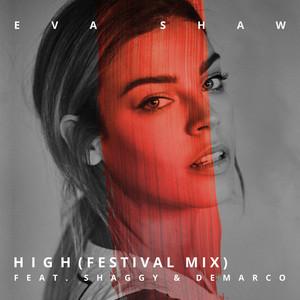 High (feat. Shaggy & Demarco) [Festival Mix]