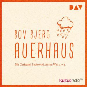 Auerhaus (Hörspiel) Audiobook