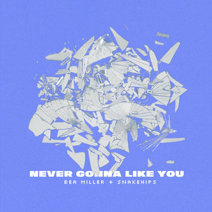 NEVER GONNA LIKE YOU cover art