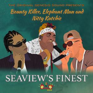 Seaview's Finest
