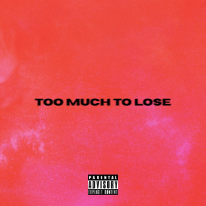 Too Much To Lose