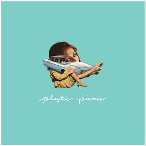 Plastic Picnic