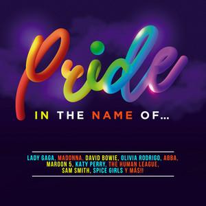 Pride In The Name Of...