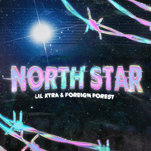North Star feat. (Foreign Forest)