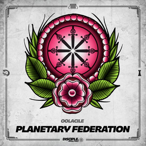 Planetary Federation