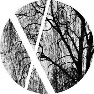 Lightest Shades Of Grey - Los Suruba Remix cover art