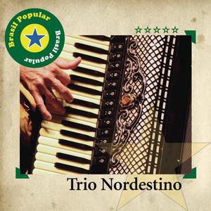 Já Faz Tempo, Não Lhe Vejo by Trio Nordestino