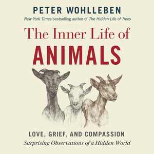 The Inner Life of Animals: Love, Grief, and Compassion -- Surprising Observations of a Hidden World (Unabridged) Audiobook