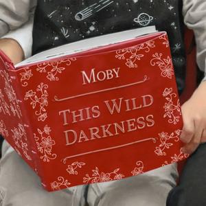 Moby – This Wild Darkness (Studio Acapella)