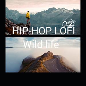 Long Trip - Instrumental cover art