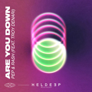 Are You Down (feat. Troy Denari)