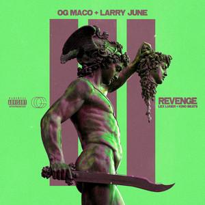 Revenge (feat. Larry June)