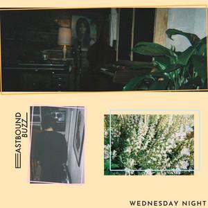 Wednesday Night