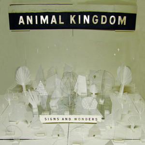 Chalk Stars by Animal Kingdom