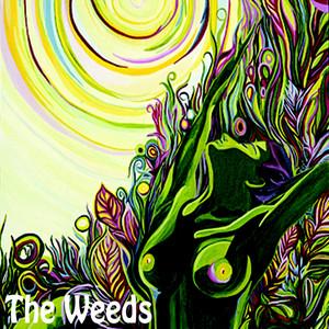Sunburst by The Weeds