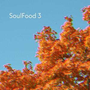 SoulFood 3