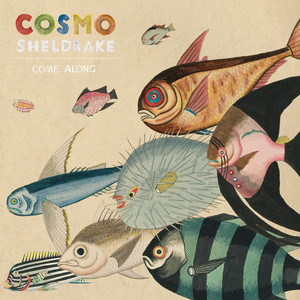Come Along - Cosmo Sheldrake