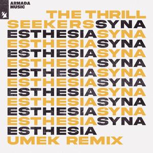 Synaesthesia - UMEK Remix by The Thrillseekers, UMEK