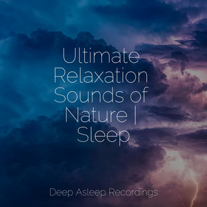 Ultimate Relaxation Sounds of Nature   Sleep