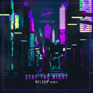 Stay The Night (Wilson Remix)