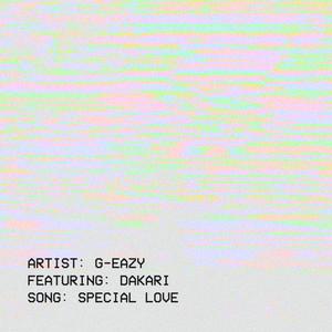 Special Love (feat. Dakari)