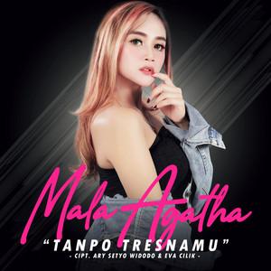 Tanpo Tresnamu