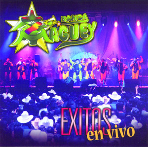 Exitos En Vivo album