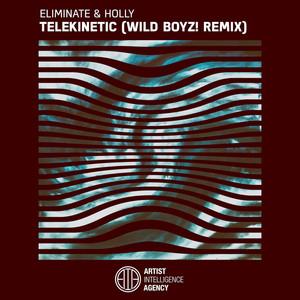 Telekinetic (Wild Boyz! Remix)